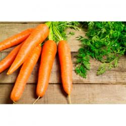 Macérat huileux de carottes...
