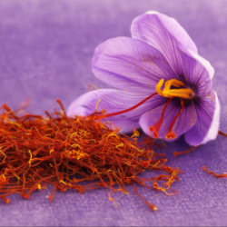 Macérat huileux de fleurs...