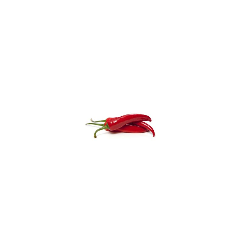 Macérat huileux de piment