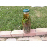 Macérat vinaigré insectifuge