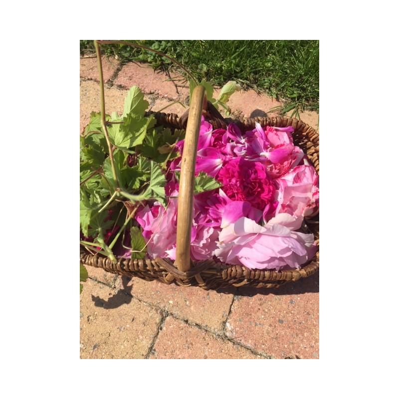 Hydrolat essentiel de géranium rosat et roses du jardin
