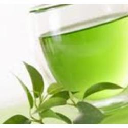 Extrait concentré de thé vert